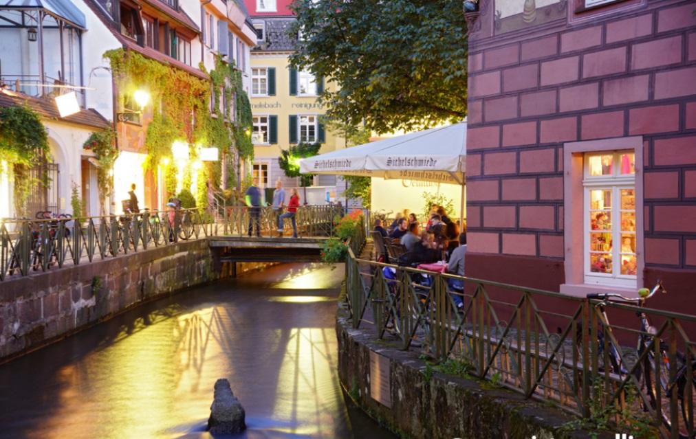 40 Jahre SFC-Bibertal:  einen Ausflug nach Freiburg, eine Weinprobe und viel Spaß